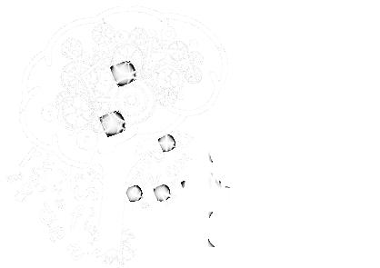 Fundación ICN